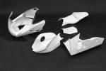 Carbonin - Carbonin Avio Fiber Race Bodywork 04-05 CBR1000RR