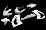 Carbonin - Carbonin?Avio Fiber Race Bodywork 2016-2020 Kawasaki ZX10R
