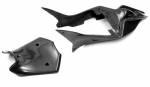 Carbonin - Carbonin Carbon Fiber Tail Unit (2 pcs) 09-21 Aprilia RSV4/RF