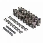 Alpha Racing valve spring kit V4.2